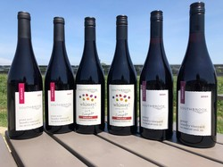 Single Vineyard Red Summer Sipper Collection